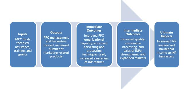 Program Logic: Indigenous Natural Products