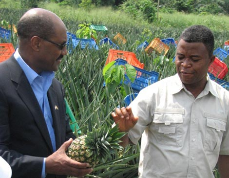 MCC CEO Daniel Yohannes visits a pineapple farm during his trip to Ghana in February.