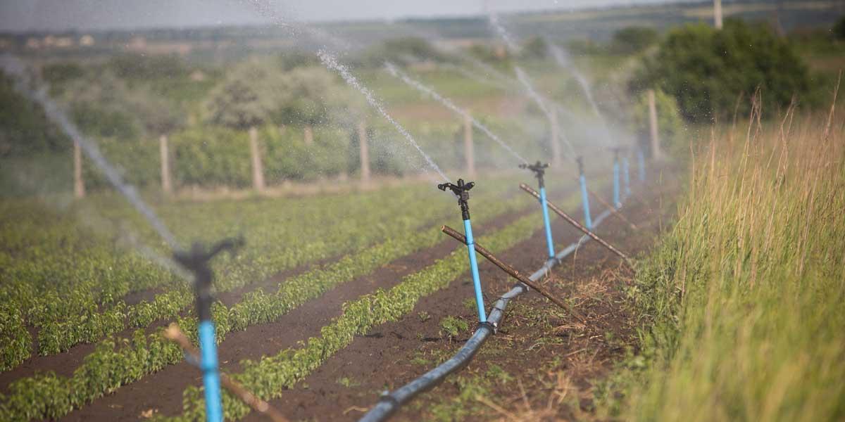Agriculture Millennium Challenge Corporation